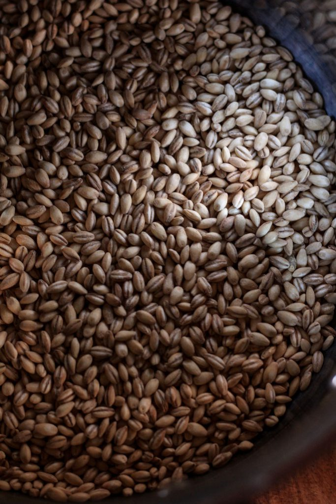 Barley for Chicken Mango Barley Salad
