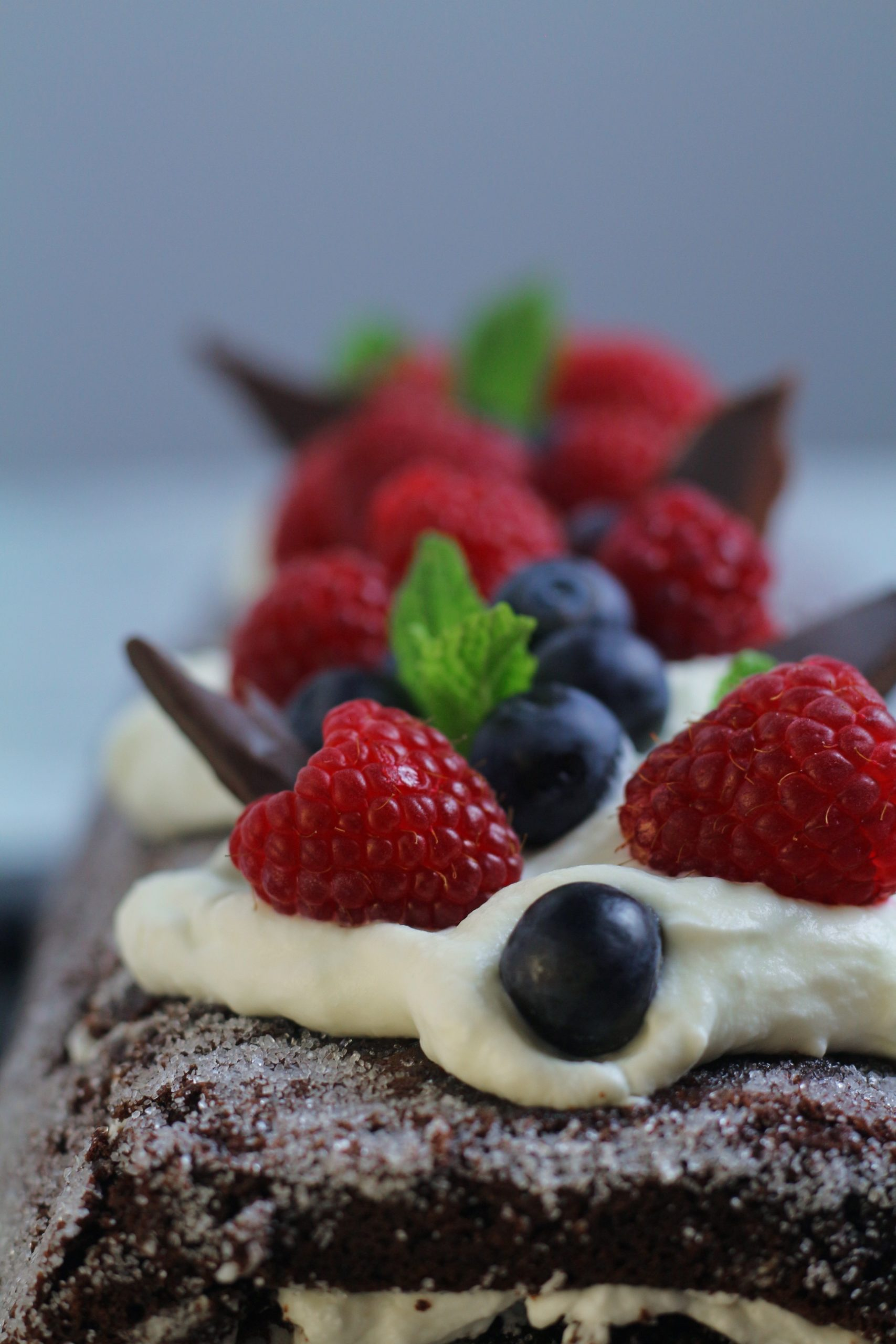 Chocolate Berry Roulade