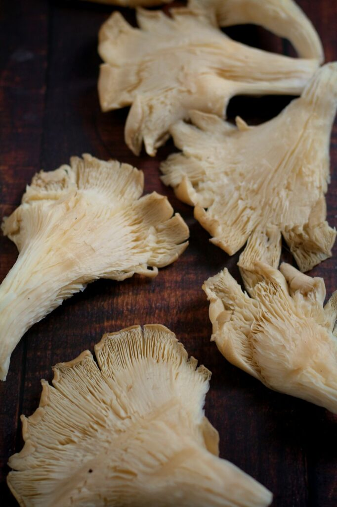 Oyster Mushrooms for Lo Mein