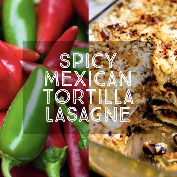 Spicy Mexican Tortilla Lasagne