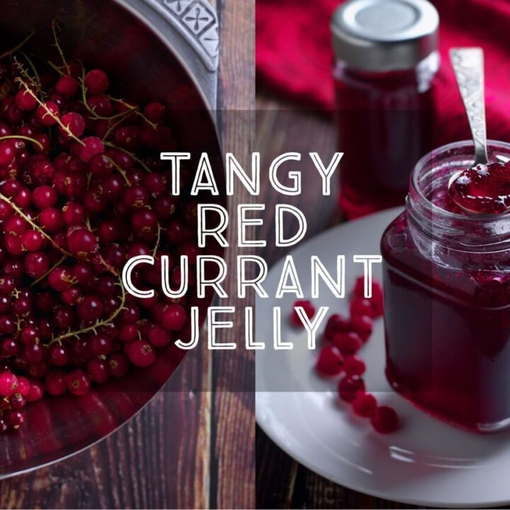 Tangy Redcurrant Jelly