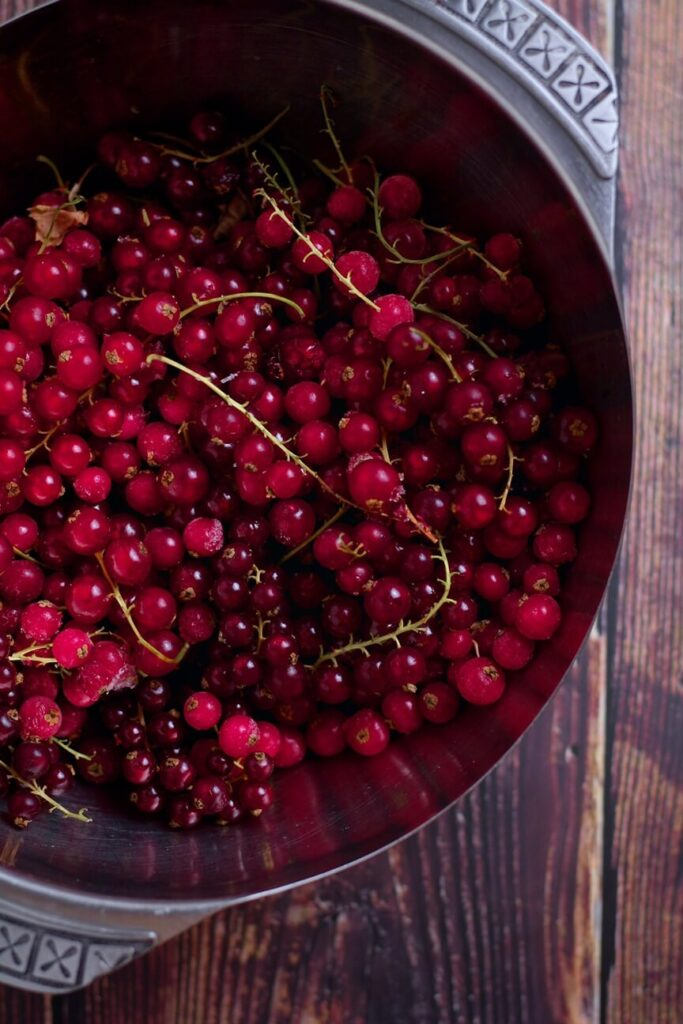 angy Redcurrant Jelly